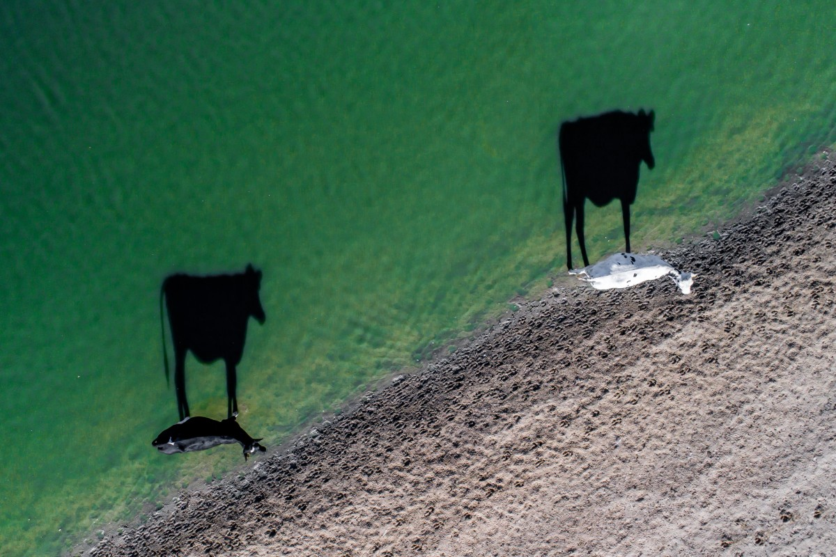 en yaratıcı drone fotografı